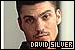 Beverly Hills 90210: David Silver