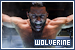 X-Men Origins: Wolverin